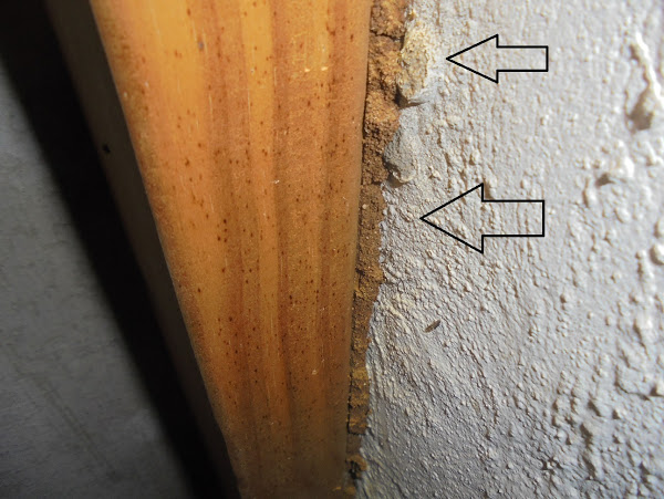 Moisture in timber